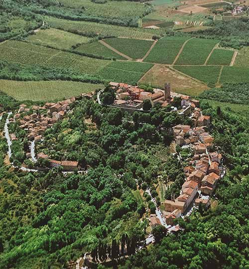 Motovun from air
